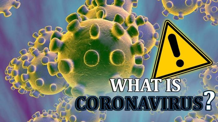 What is Coronavirus?, genhealthtips